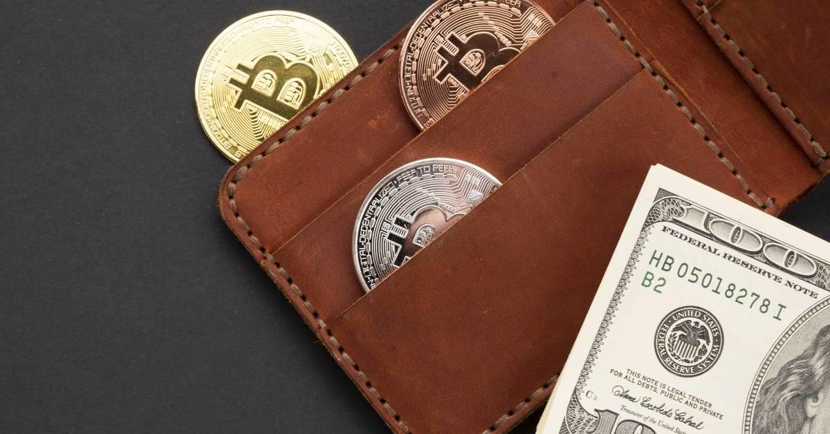 Che cos'è un E-Wallet e come funziona