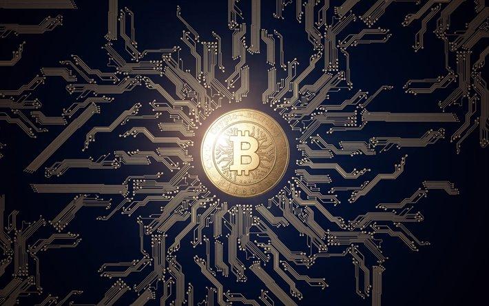 Investire in cryptovalute RisparmiandoMelaGodo